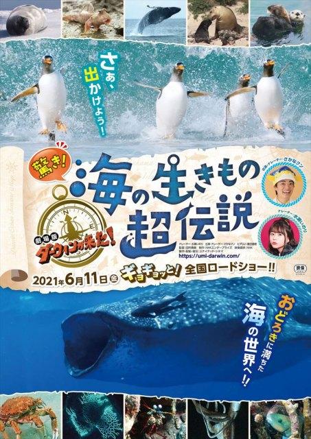『驚き!海の生きもの超伝説 劇場版ダーウィンが来た!』6月11日公開の画像