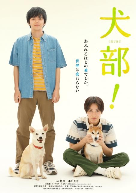 獣医学部に実在したサークル「犬部」を元に描く青春犬ラブムービー『犬部!』7月22日公開 (C)2021『犬部!』製作委員会の画像