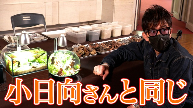 映像配信サービス「GYAO!」の番組『木村さ~~ん!』第142回の模様(C)Johnny&Associatesの画像