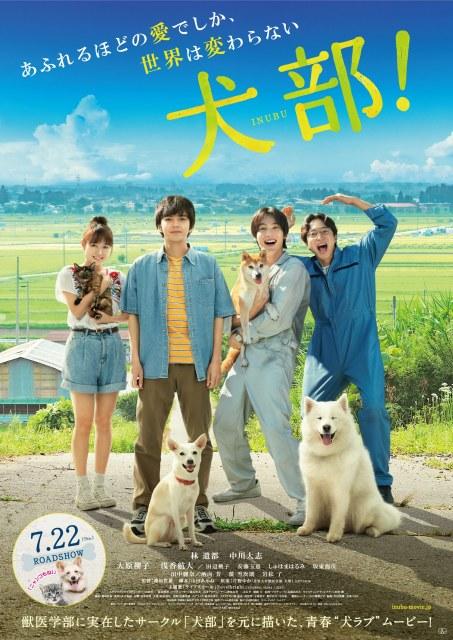 映画『犬部』(7月22日公開) (C)2021『犬部!』製作委員会の画像