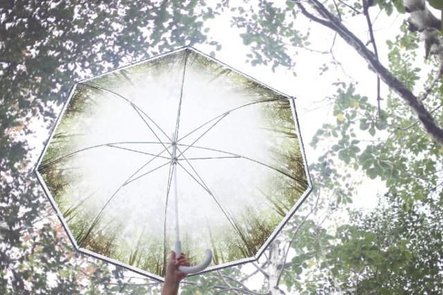 「HAPPY CLEAER UMBRELLA」(グリーンフォレスト柄)の画像