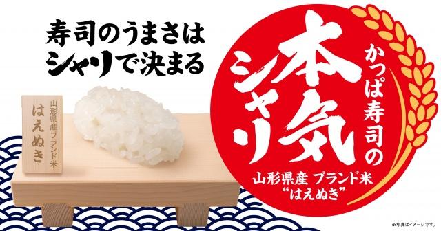 かっぱ寿司が回転寿司チェーンで初めて単一ブランド米を「シャリ」に採用の画像