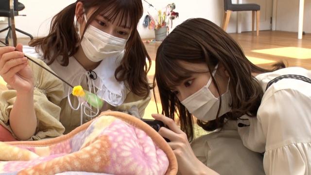 『どうぶつピース!!』より (C)テレビ東京の画像