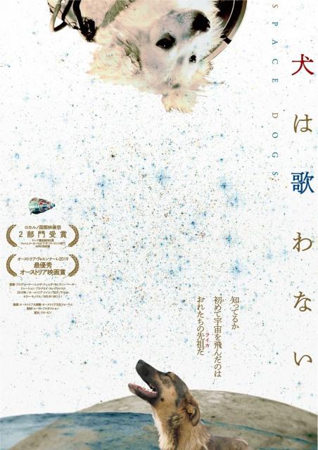 未知の映像美と残酷な現実が鑑賞者を犬の世界へと誘うドキュメンタリー映画『犬は歌わない』6月12日公開 (C)Raumzeitfilmの画像