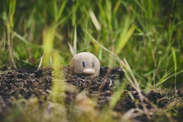 よみうりランドにオープンする新エリア『Pokemon WONDER』の画像