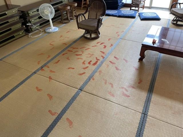 血のような足跡が…犯人は3歳女児? 藤基神社で起きた「可愛すぎる事件」の画像