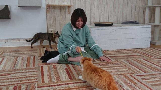 10日放送『I LOVE みんなのどうぶつ園』ゲストの真木よう子 (C)日本テレビの画像