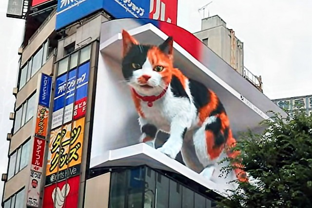新宿東口に現れた巨大猫(CROSS SPACE公式YouTubeより)の画像