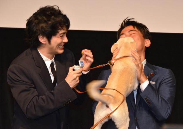 保護犬から熱烈キスを受けた小泉進次郎環境大臣(右) (C)ORICON NewS inc.の画像