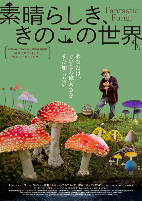 ドキュメンタリー映画『素晴らしき、きのこの世界』9月24日公開決定 (C)2018, Fantastic Fungi, LLCの画像