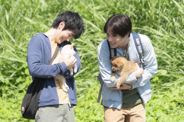 映画『犬部!』(7月22日公開)(左から)主人公・花井颯太(林遣都)、柴崎涼介(中川大志) (C)2021『犬部!』製作委員会の画像