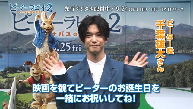 映画『ピーターラビット2/バーナバスの誘惑』日本語吹替版声優の千葉雄大からお祝いコメント到着の画像