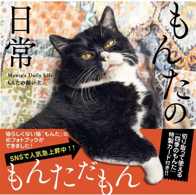 もんたの飼い主『もんたの日常』(KADOKAWA)書影※帯ありの画像
