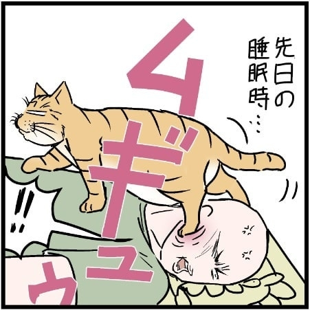 飼い主さんが横になってもおかまいなし、顔を踏んでいく猫のミュウくん(画像:@covovoy)の画像
