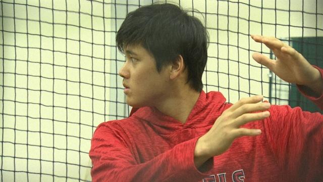 バッティングのトレーニングをする大谷翔平選手(2018年11月) (C)NHKの画像
