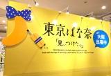 """東京ばな奈、お土産なのに全国コンビニ販売 コロナ禍で変わる""""東京土産""""の新たな可能性"""