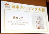 第1回『日本ネーミング大賞』の大賞に「鼻セレブ」 優秀賞に大正2年発売の「求心」も