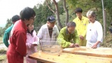 日テレ『所さんの目がテン!』環境省主催のアワードで受賞 地上波テレビ初の快挙