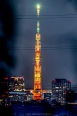 東京タワーとスカイツリーがぴったり重なった写真に反響「こんな場所あるんだ!」「最終兵器感ある」