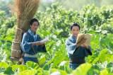 【青天を衝け】吉沢亮、江戸パートの豪華セットに驚き 自身は「畑ばっかり耕している」
